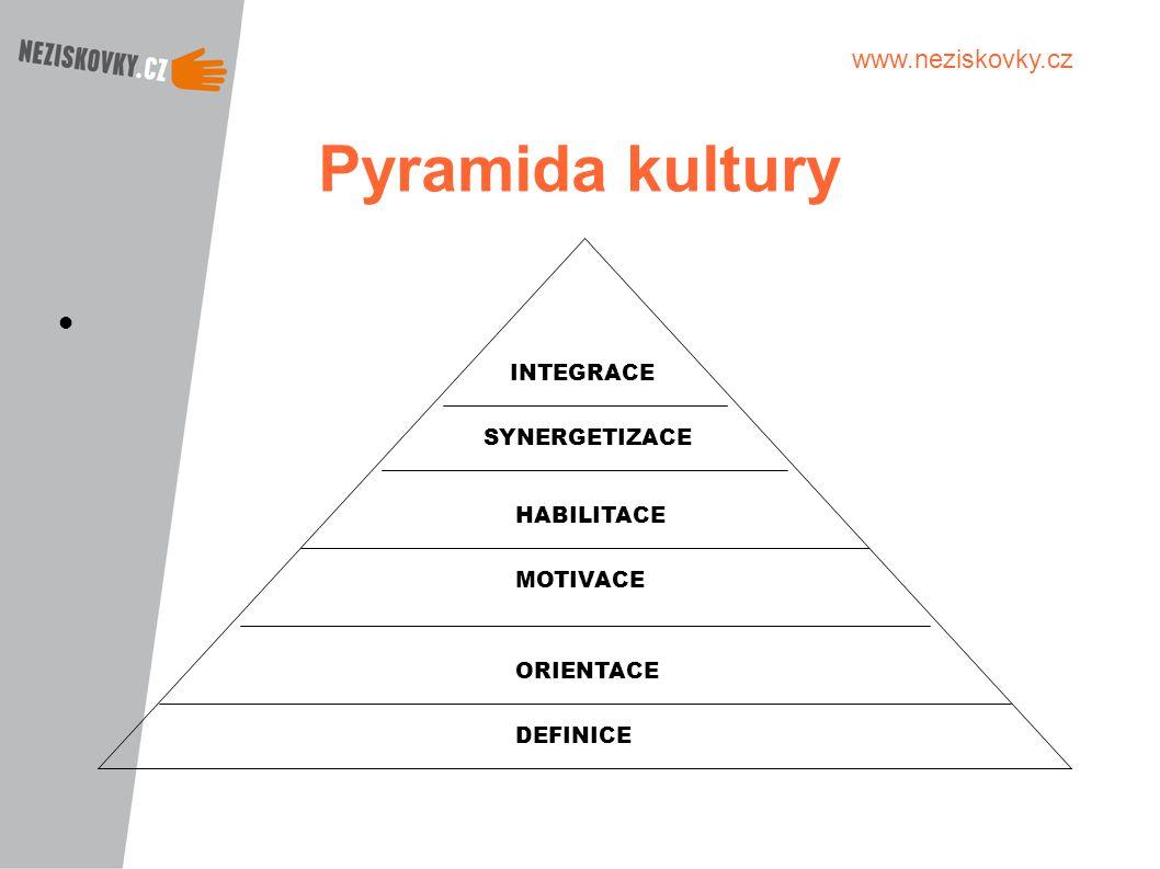 www.neziskovky.cz Pyramida kultury INTEGRACE SYNERGETIZACE HABILITACE MOTIVACE ORIENTACE DEFINICE