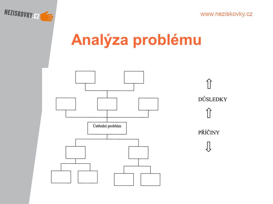 www.neziskovky.cz Analýza problému