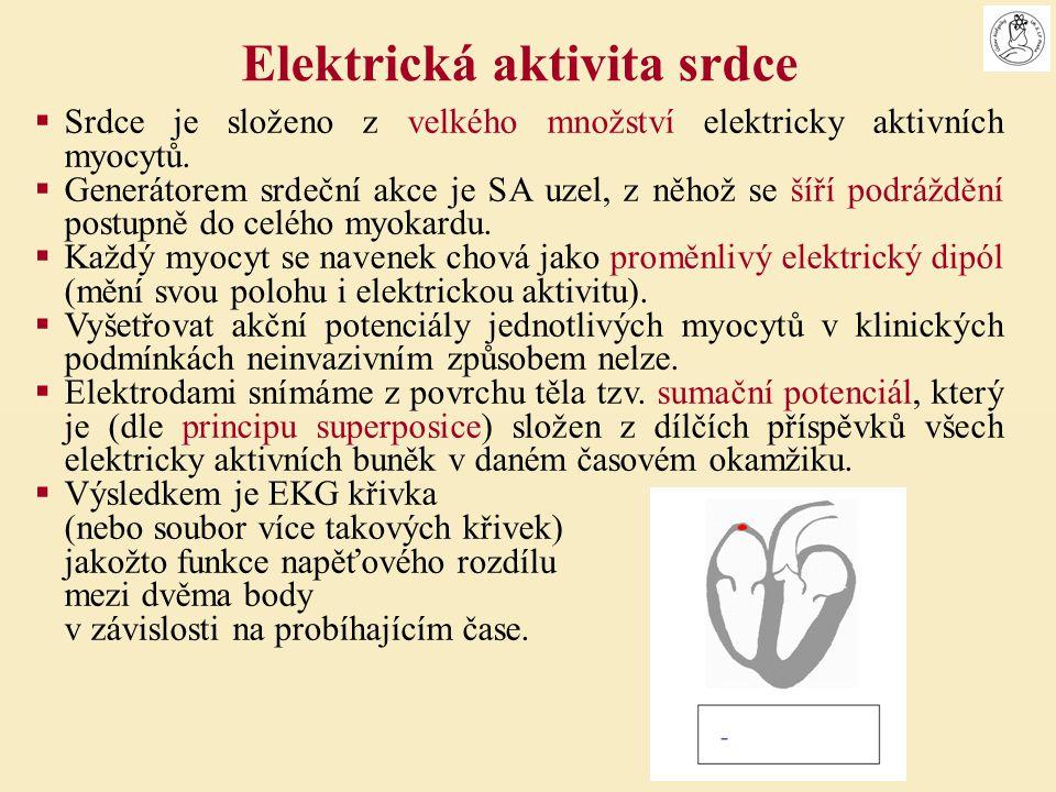  Srdce je složeno z velkého množství elektricky aktivních myocytů.  Generátorem srdeční akce je SA uzel, z něhož se šíří podráždění postupně do celé