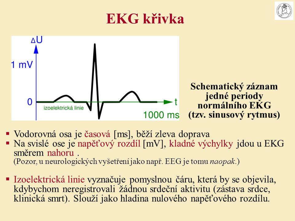  Vodorovná osa je časová [ms], běží zleva doprava  Na svislé ose je napěťový rozdíl [mV], kladné výchylky jdou u EKG směrem nahoru. (Pozor, u neurol