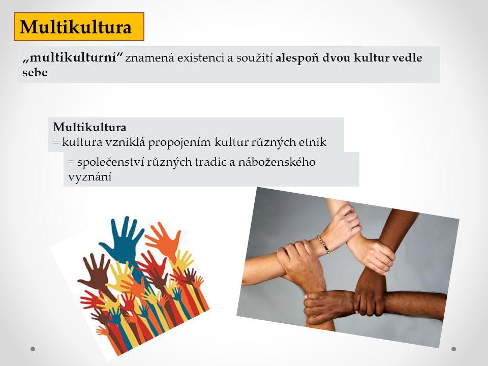 """Multikultura = kultura vzniklá propojením kultur různých etnik Multikultura """"multikulturní"""" znamená existenci a soužití alespoň dvou kultur vedle sebe"""