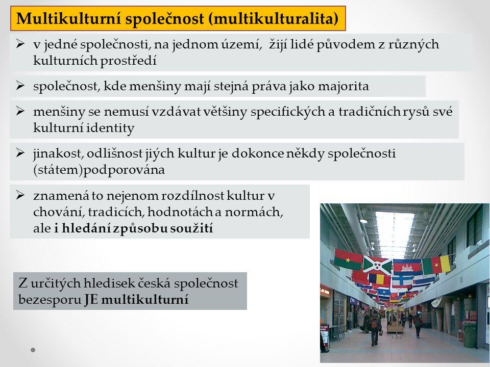  menšiny se nemusí vzdávat většiny specifických a tradičních rysů své kulturní identity Z určitých hledisek česká společnost bezesporu JE multikultur