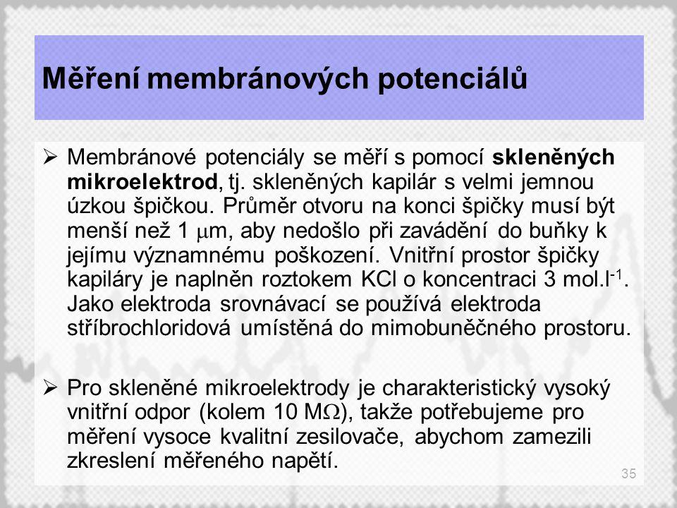 35 Měření membránových potenciálů  Membránové potenciály se měří s pomocí skleněných mikroelektrod, tj. skleněných kapilár s velmi jemnou úzkou špičk