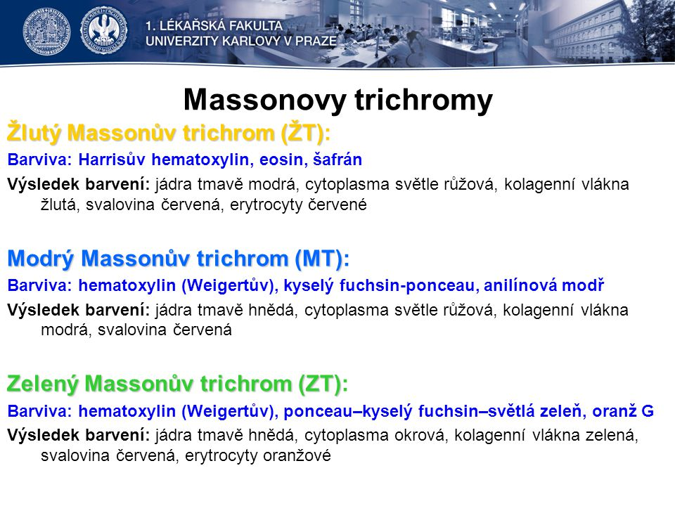 Massonovy trichromy Žlutý Massonův trichrom (ŽT) Žlutý Massonův trichrom (ŽT): Barviva: Harrisův hematoxylin, eosin, šafrán Výsledek barvení: jádra tm