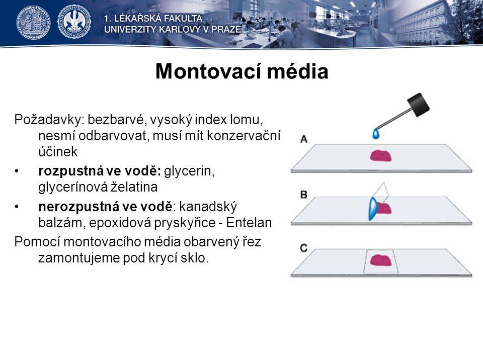 Montovací média Požadavky: bezbarvé, vysoký index lomu, nesmí odbarvovat, musí mít konzervační účinek rozpustná ve vodě: glycerin, glycerínová želatin