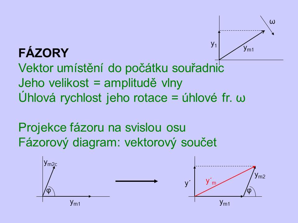 FÁZORY Vektor umístění do počátku souřadnic Jeho velikost = amplitudě vlny Úhlová rychlost jeho rotace = úhlové fr. ω Projekce fázoru na svislou osu F