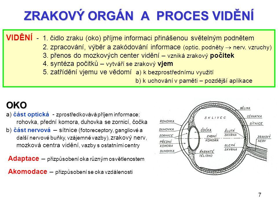 7 ZRAKOVÝ ORGÁN A PROCES VIDĚNÍ VIDĚNÍ - 1. čidlo zraku (oko) příjme informaci přinášenou světelným podnětem 2. zpracování, výběr a zakódování informa