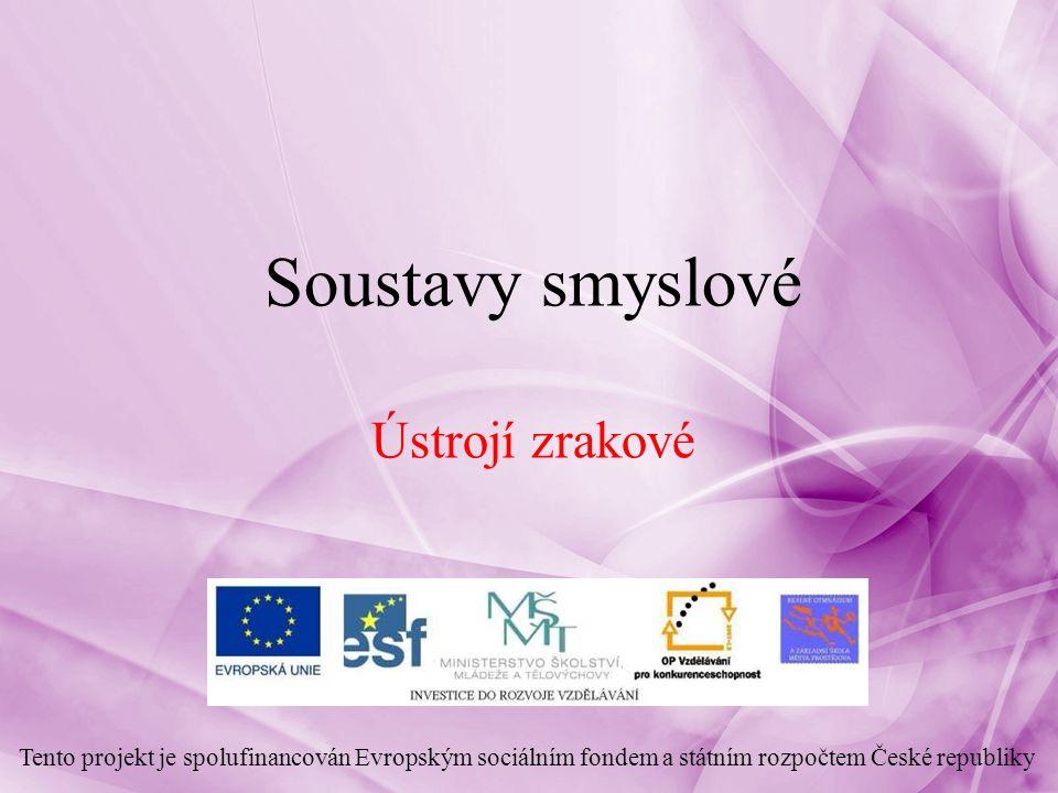 Soustavy smyslové Ústrojí zrakové Tento projekt je spolufinancován Evropským sociálním fondem a státním rozpočtem České republiky