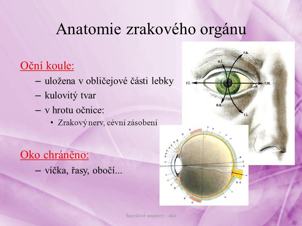 Zrakové ústrojí Stavba oční koule: zevní vrstva vazivová - bělima (sclera) a rohovka (cornea) Bělima: – 4/5 povrchu oční koule, tuhá bílá vazivová blána – u dětí namodralá, ve stáří tmavne – tuk – tloušťka 0,4-2mm, na pření straně přechází v rohovku – upínají se na ni okohybné svaly, prostupuje zrakový nerv Rohovka: – zbývající 1/5 povrchu oční koule – není prostoupena cévami, je však inervována – je vyklenutější, při dotyku nepodmíněný reflex – sevření víček – nepravidelné zakřivení – předmět je rozmazaný 5Smyslové soustavy - oko