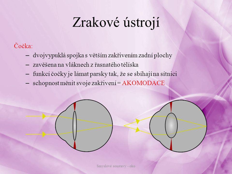 Zrakové ústrojí vnitřní nervová vrstva: sítnice (retina) - vlastní světločivná vrstva – vnitřní vrstva oční koule – vlastní smyslové buňky - tyčinky a čípky tyčinky – světlo, čípky – barvy (viz.