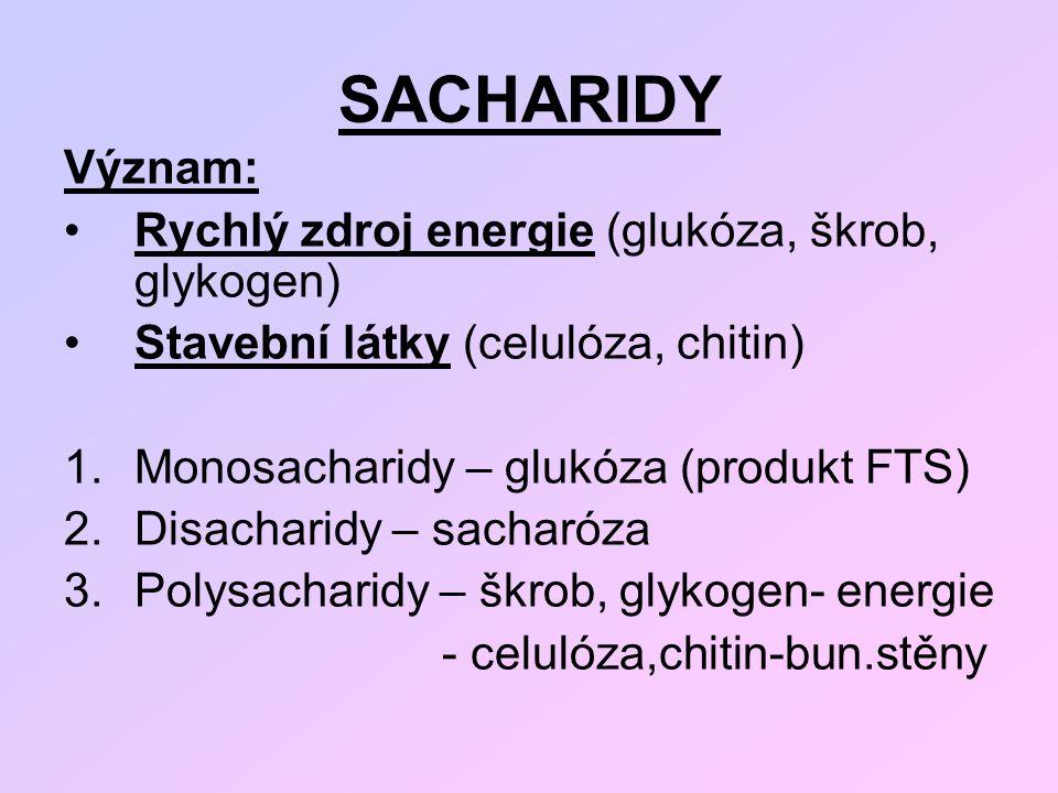 SACHARIDY Význam: Rychlý zdroj energie (glukóza, škrob, glykogen) Stavební látky (celulóza, chitin) 1.Monosacharidy – glukóza (produkt FTS) 2.Disachar