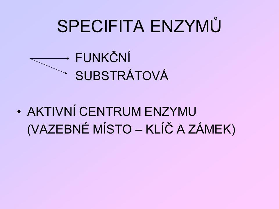 SPECIFITA ENZYMŮ FUNKČNÍ SUBSTRÁTOVÁ AKTIVNÍ CENTRUM ENZYMU (VAZEBNÉ MÍSTO – KLÍČ A ZÁMEK)