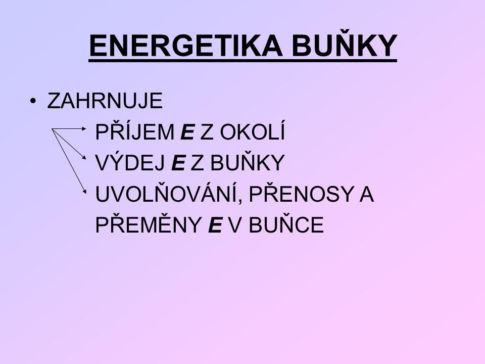 ENERGETIKA BUŇKY ZAHRNUJE PŘÍJEM E Z OKOLÍ VÝDEJ E Z BUŇKY UVOLŇOVÁNÍ, PŘENOSY A PŘEMĚNY E V BUŇCE