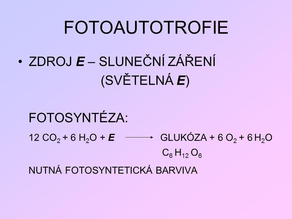 FOTOAUTOTROFIE ZDROJ E – SLUNEČNÍ ZÁŘENÍ (SVĚTELNÁ E) FOTOSYNTÉZA: 12 CO 2 + 6 H 2 O + E GLUKÓZA + 6 O 2 + 6 H 2 O C 6 H 12 O 6 NUTNÁ FOTOSYNTETICKÁ B