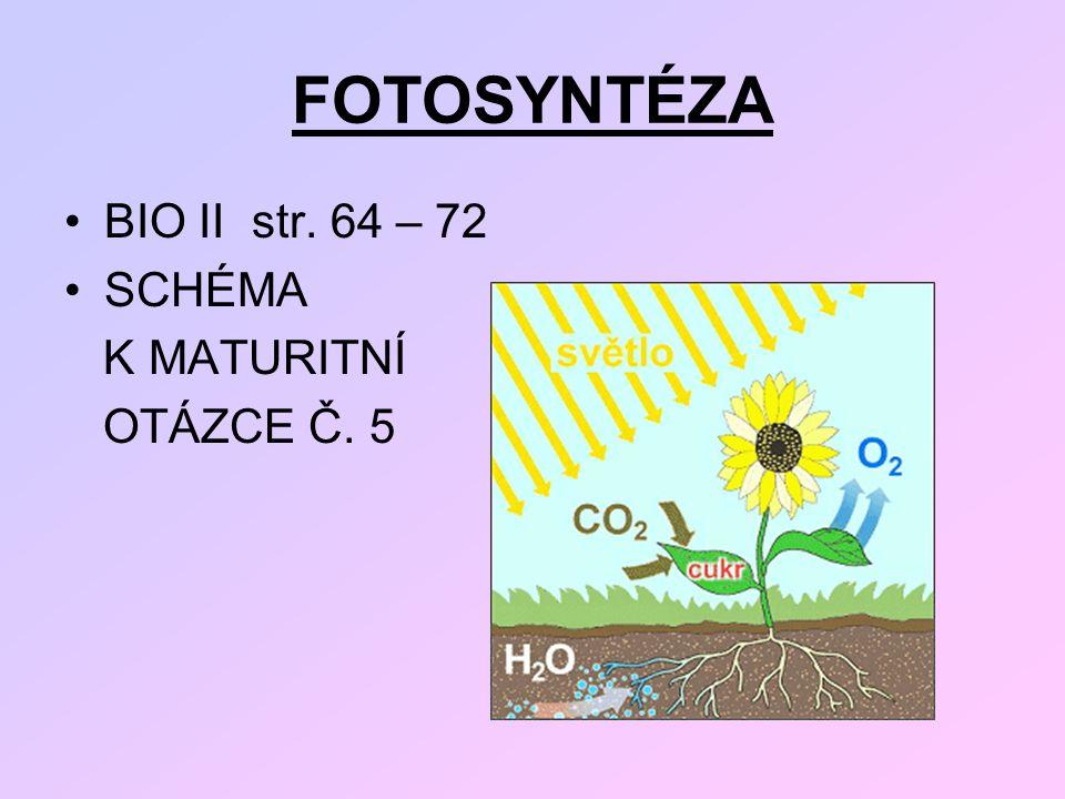FOTOSYNTÉZA BIO II str. 64 – 72 SCHÉMA K MATURITNÍ OTÁZCE Č. 5