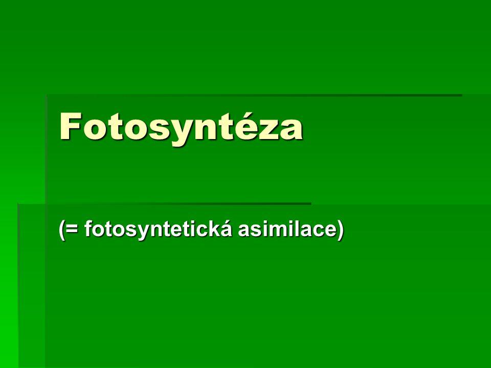 Fotosyntéza (= fotosyntetická asimilace)