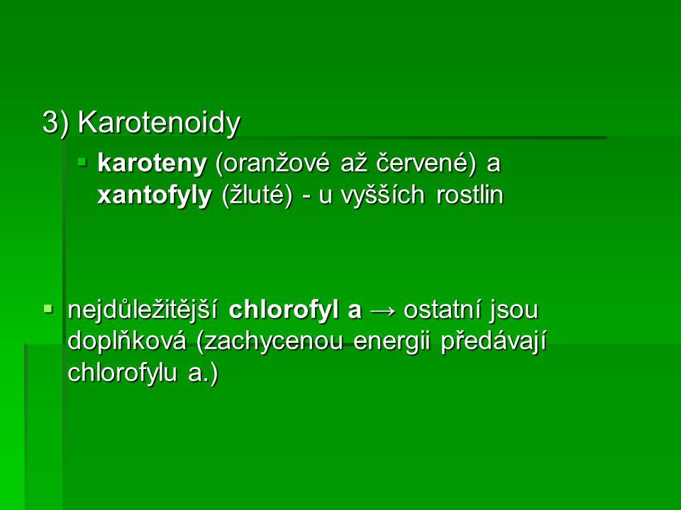 3) Karotenoidy  karoteny (oranžové až červené) a xantofyly (žluté) - u vyšších rostlin  nejdůležitější chlorofyl a → ostatní jsou doplňková (zachycenou energii předávají chlorofylu a.)