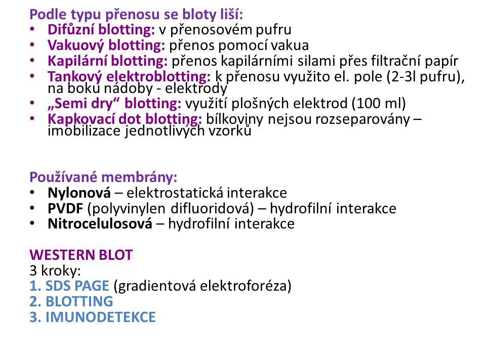 Podle typu přenosu se bloty liší: Difůzní blotting: v přenosovém pufru Vakuový blotting: přenos pomocí vakua Kapilární blotting: přenos kapilárními si