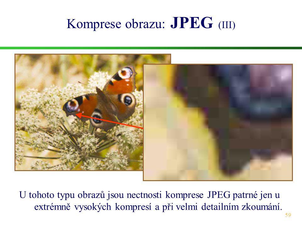 59 Komprese obrazu: JPEG (III) U tohoto typu obrazů jsou nectnosti komprese JPEG patrné jen u extrémně vysokých kompresí a při velmi detailním zkoumán
