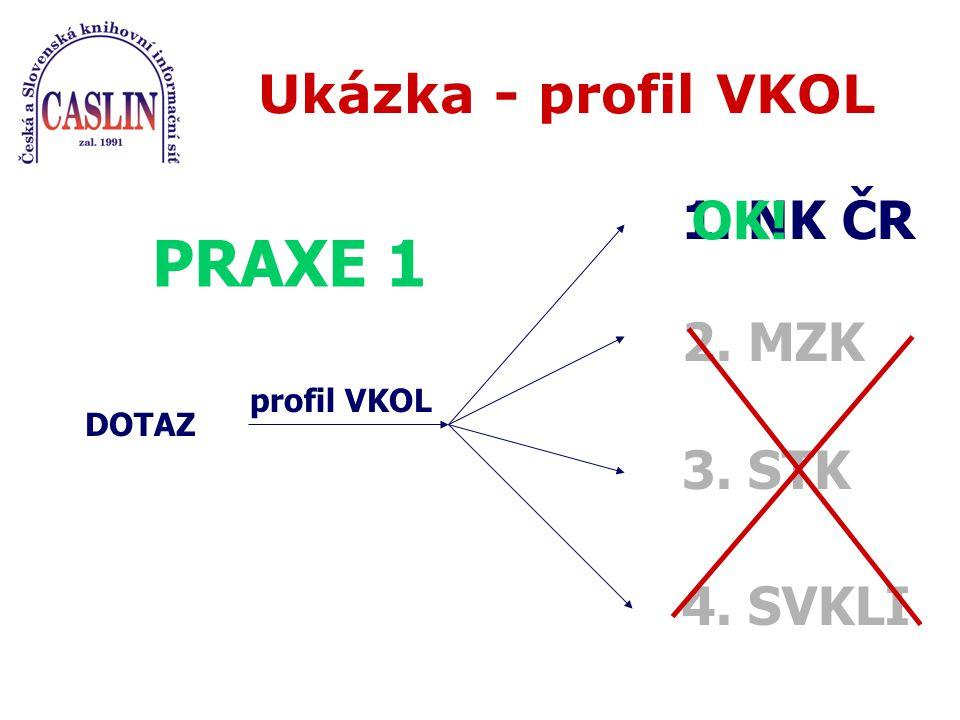 Ukázka - profil VKOL DOTAZ profil VKOL 1. NK ČR PRAXE 1 OK! 2. MZK 3. STK 4. SVKLI