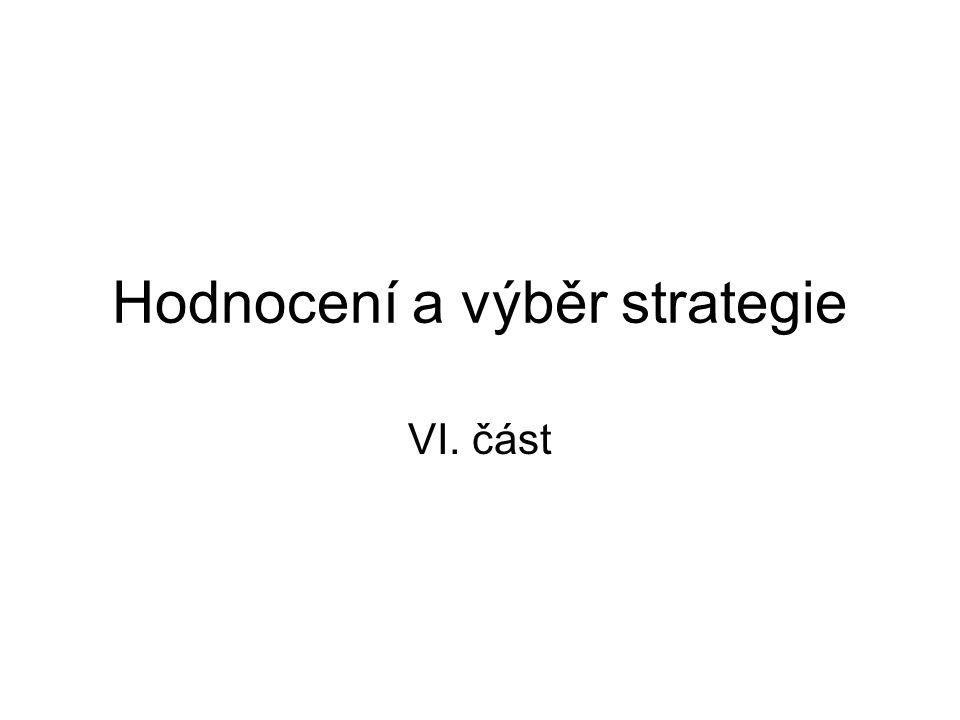 Hodnocení a výběr strategie VI. část