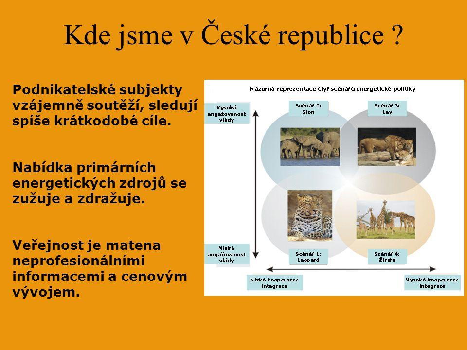 Kde jsme v České republice ? Podnikatelské subjekty vzájemně soutěží, sledují spíše krátkodobé cíle. Nabídka primárních energetických zdrojů se zužuje