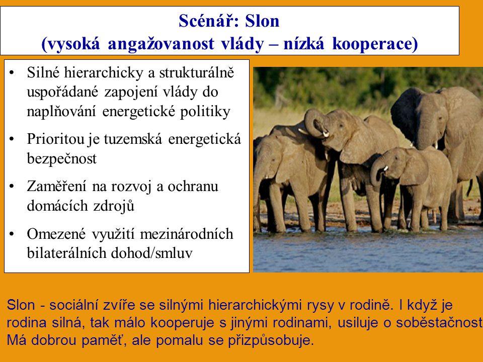 Scénář: Slon (vysoká angažovanost vlády – nízká kooperace) Silné hierarchicky a strukturálně uspořádané zapojení vlády do naplňování energetické polit