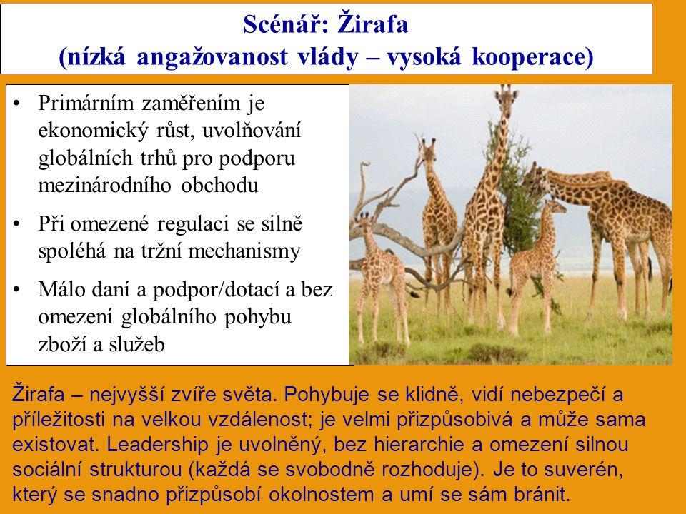 Scénář: Žirafa (nízká angažovanost vlády – vysoká kooperace) Primárním zaměřením je ekonomický růst, uvolňování globálních trhů pro podporu mezinárodního obchodu Při omezené regulaci se silně spoléhá na tržní mechanismy Málo daní a podpor/dotací a bez omezení globálního pohybu zboží a služeb Žirafa – nejvyšší zvíře světa.