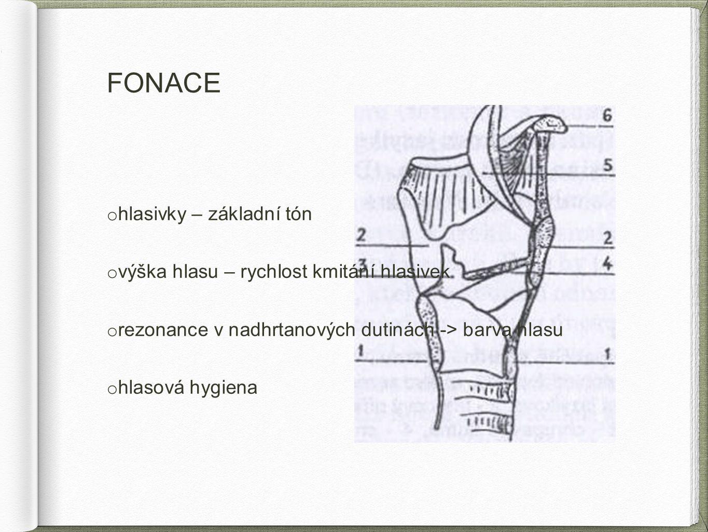 FONACE o hlasivky – základní tón o výška hlasu – rychlost kmitání hlasivek o rezonance v nadhrtanových dutinách -> barva hlasu o hlasová hygiena