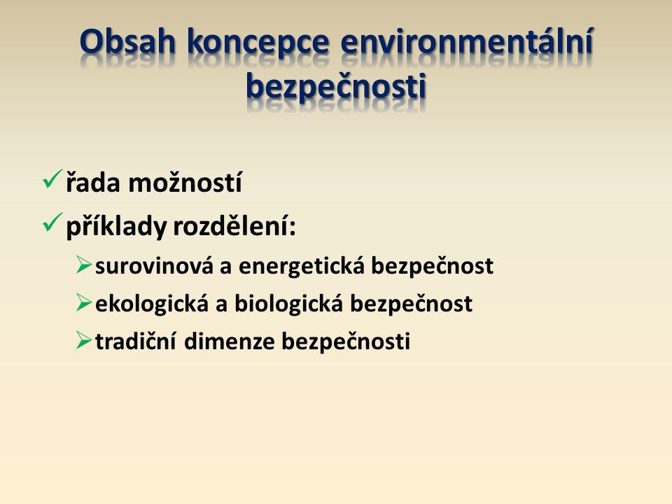 řada možností příklady rozdělení:  surovinová a energetická bezpečnost  ekologická a biologická bezpečnost  tradiční dimenze bezpečnosti