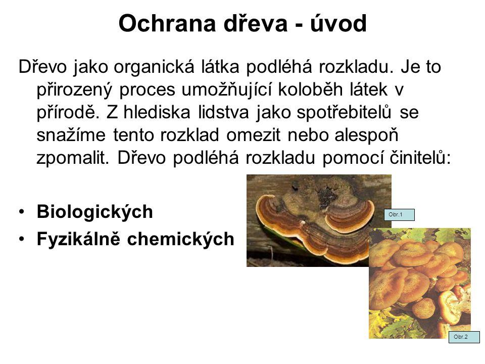 Ochrana dřeva - úvod Dřevo jako organická látka podléhá rozkladu.