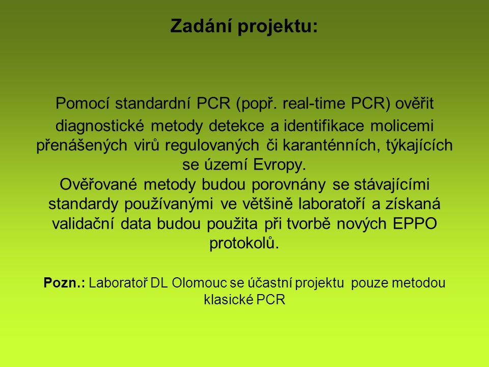 Zadání projektu: Pomocí standardní PCR (popř.