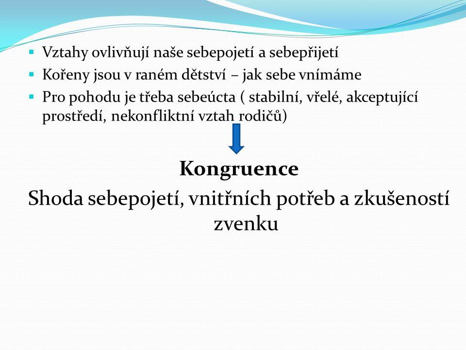 Terapie inkongruence Proměna sebepojetí na základě významných podnětů a zkušeností v životě – není-li čl.