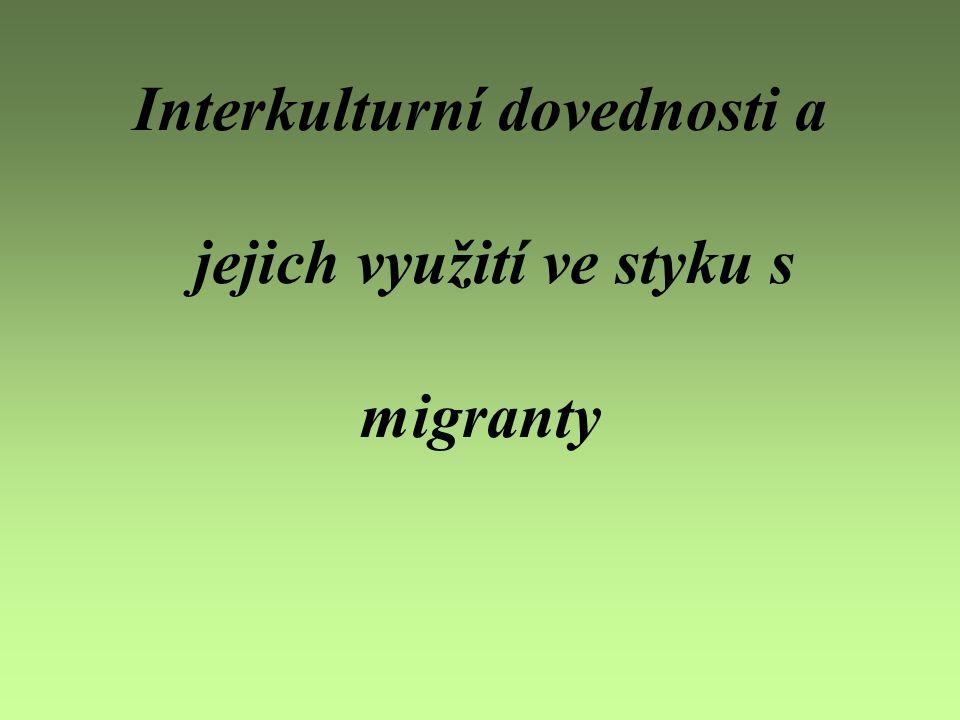 Interkulturní dovednosti a jejich využití ve styku s migranty