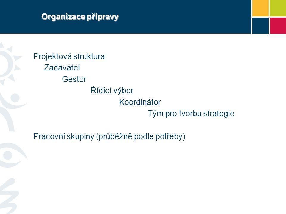 Organizace přípravy Projektová struktura: Zadavatel Gestor Řídící výbor Koordinátor Tým pro tvorbu strategie Pracovní skupiny (průběžně podle potřeby)