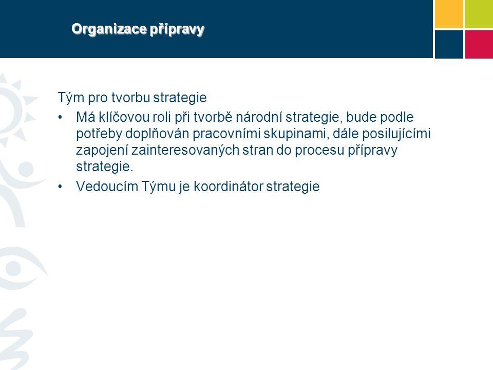 Organizace přípravy Tým pro tvorbu strategie Má klíčovou roli při tvorbě národní strategie, bude podle potřeby doplňován pracovními skupinami, dále po