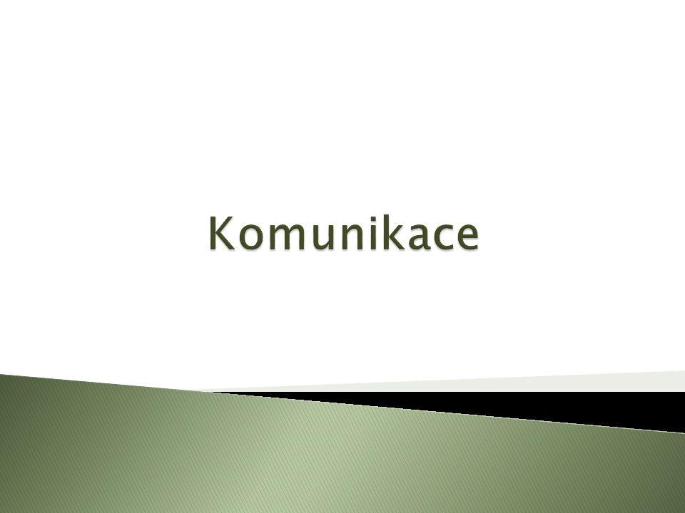  Výslovnost textu  Nesrozumitelnost mluveného projevu může ovlivnit i chybná výslovnost.