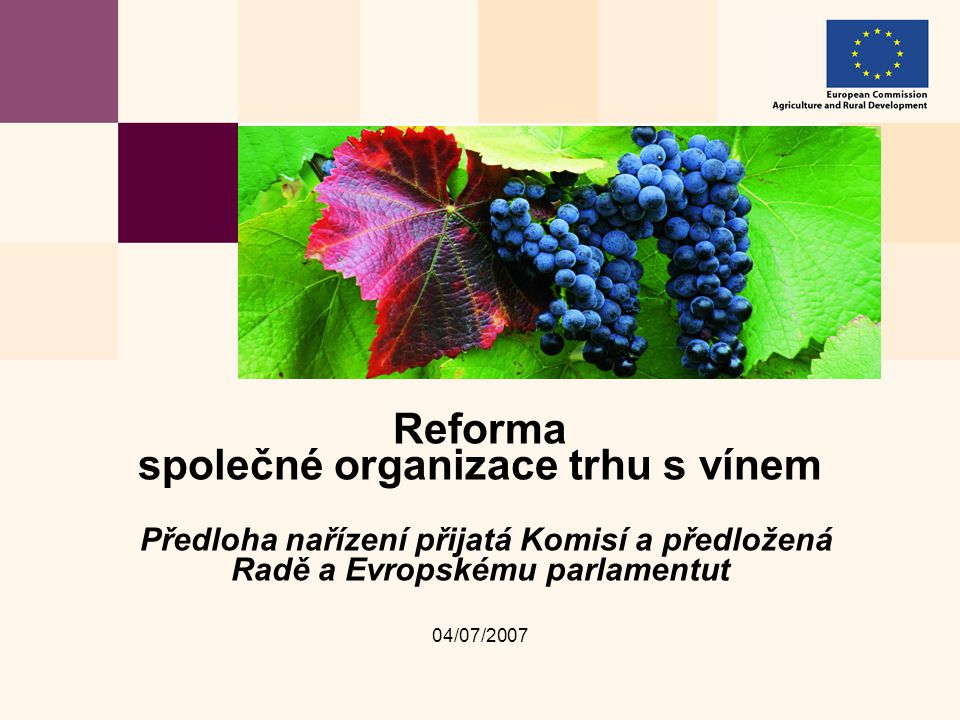 04/07/2007 Reforma společné organizace trhu s vínem Předloha nařízení přijatá Komisí a předložená Radě a Evropskému parlamentut