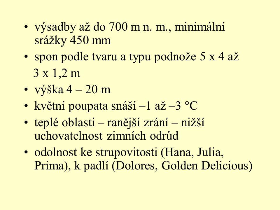 Hrušeň – Pyrus communis u nás odrůdy – Clappova, Solanka, Charneuská, Boskova lahvice – čtvrtkmeny ve sponu 6 – 7 x 6 – 7m, zákrsek 6 x 3 – 4m dosahuje výšky 8 – 18 m i více, dožívá se 80 let