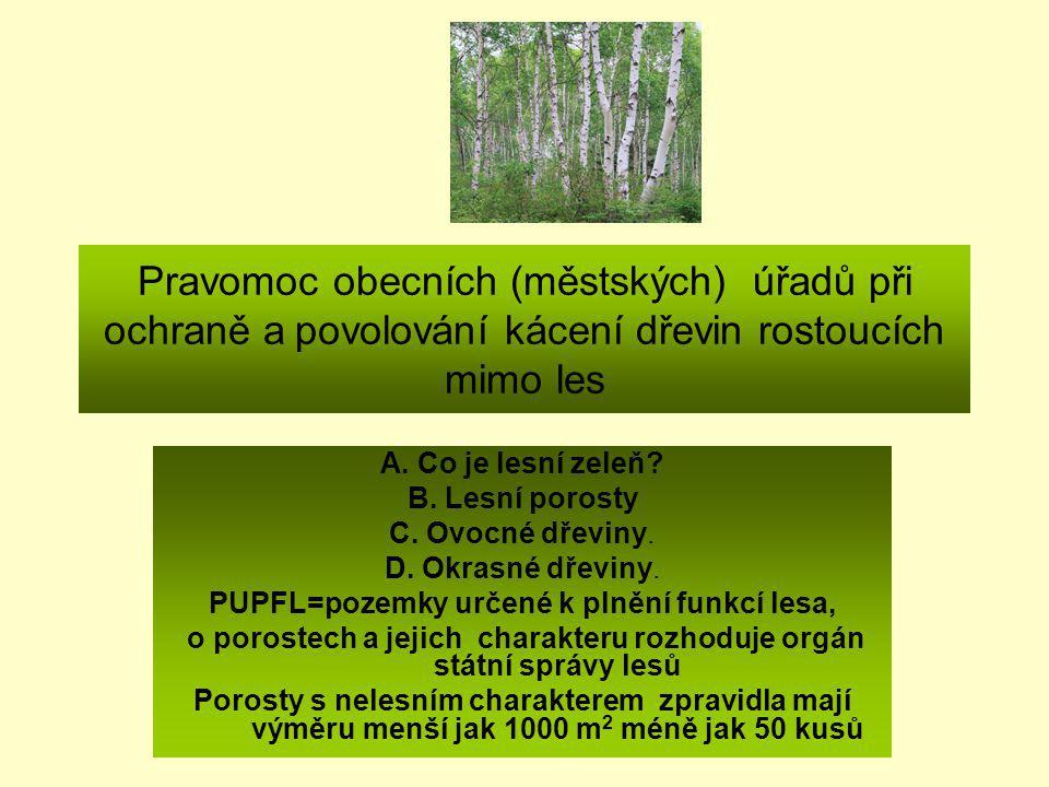 Pravomoc obecních (městských) úřadů při ochraně a povolování kácení dřevin rostoucích mimo les A. Co je lesní zeleň? B. Lesní porosty C. Ovocné dřevin