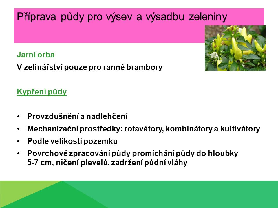Příprava půdy pro výsev a výsadbu zeleniny Jarní orba V zelinářství pouze pro ranné brambory Kypření půdy Provzdušnění a nadlehčení Mechanizační prost