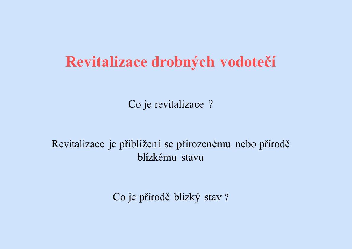 Revitalizace drobných vodotečí Co je revitalizace ? Revitalizace je přiblížení se přirozenému nebo přírodě blízkému stavu Co je přírodě blízký stav ?