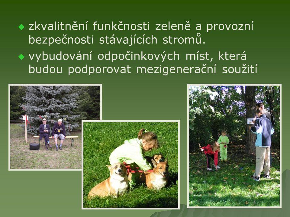   zkvalitnění funkčnosti zeleně a provozní bezpečnosti stávajících stromů.