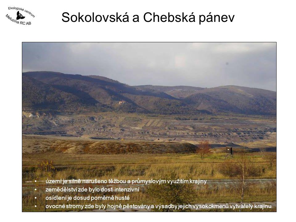 Období 2001 - 2005 rozsah asanace náletových dřevin do roku 2005 původní stav v roce 2001 Pozemkový spolek Meluzína