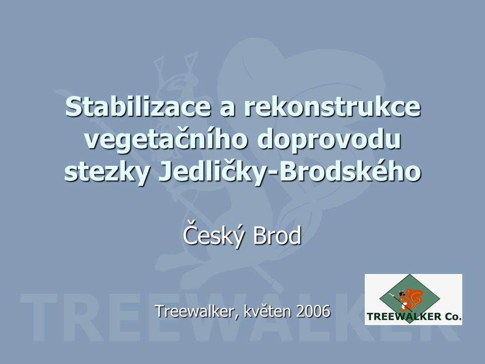 Stabilizace a rekonstrukce vegetačního doprovodu stezky Jedličky-Brodského Český Brod Treewalker, květen 2006