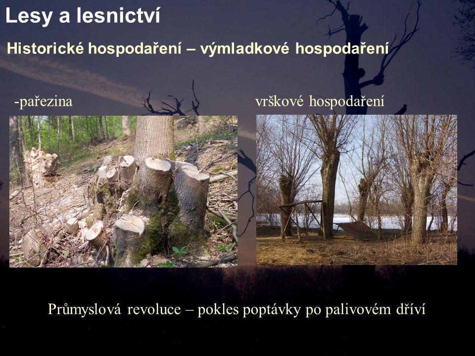 Lesy a lesnictví Historické hospodaření – výmladkové hospodaření -pařezina vrškové hospodaření Průmyslová revoluce – pokles poptávky po palivovém dříví