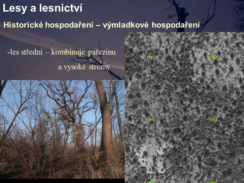 Lesy a lesnictví Historické hospodaření – výmladkové hospodaření -les střední – kombinuje pařezinu a vysoké stromy