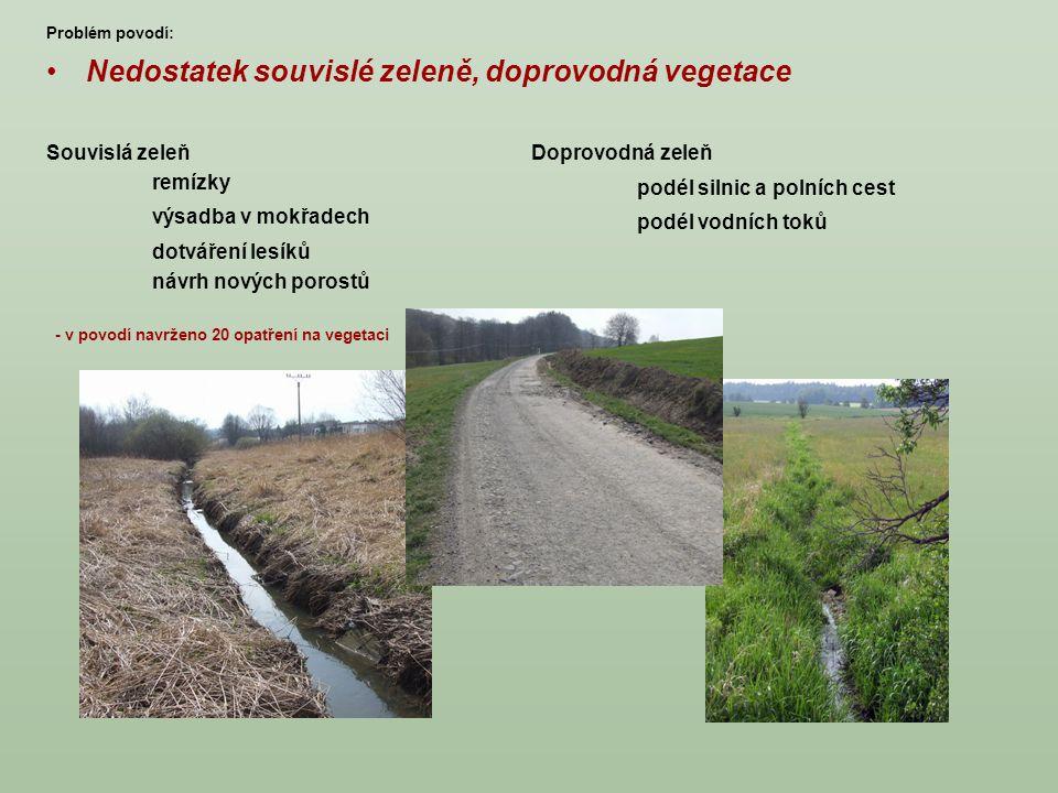 Nedostatek souvislé zeleně, doprovodná vegetace Souvislá zeleň remízky výsadba v mokřadech dotváření lesíků návrh nových porostů Doprovodná zeleň podé