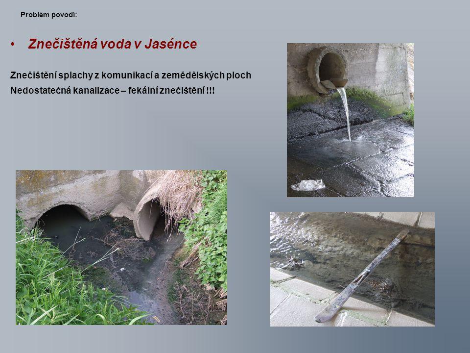 Znečištěná voda v Jasénce Znečištění splachy z komunikací a zemědělských ploch Nedostatečná kanalizace – fekální znečištění !!! Problém povodí: