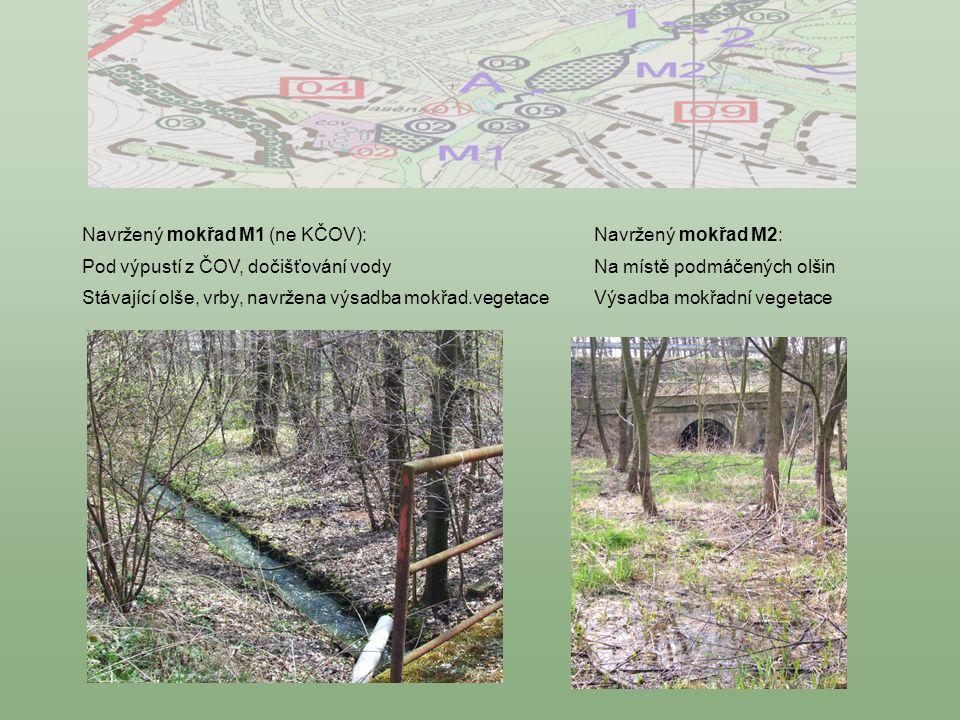 Navržený mokřad M2: Na místě podmáčených olšin Výsadba mokřadní vegetace Navržený mokřad M1 (ne KČOV): Pod výpustí z ČOV, dočišťování vody Stávající o
